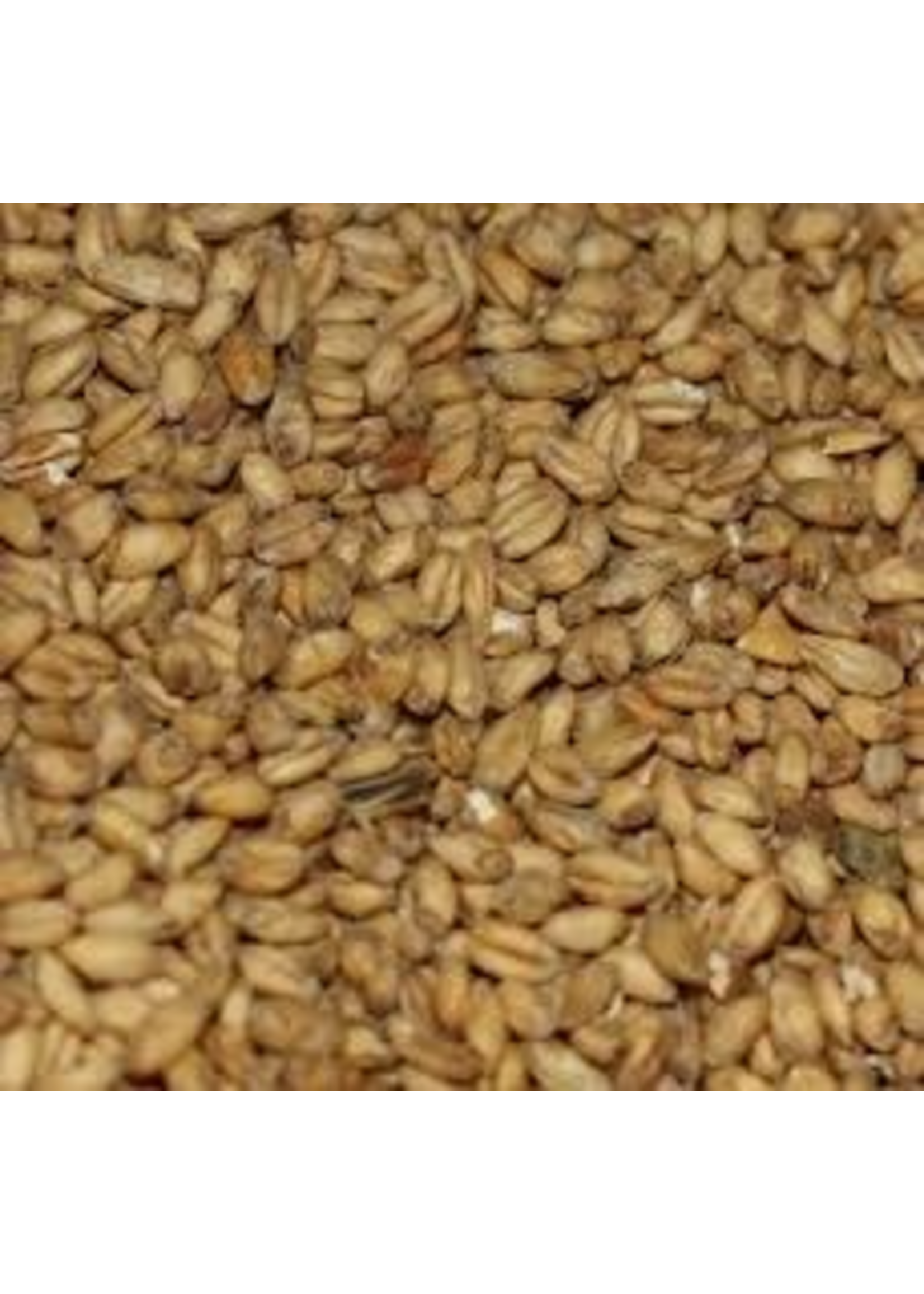 Grain Malteries Franco-Belges Caramel Wheat Malt - A24 - 1 LB