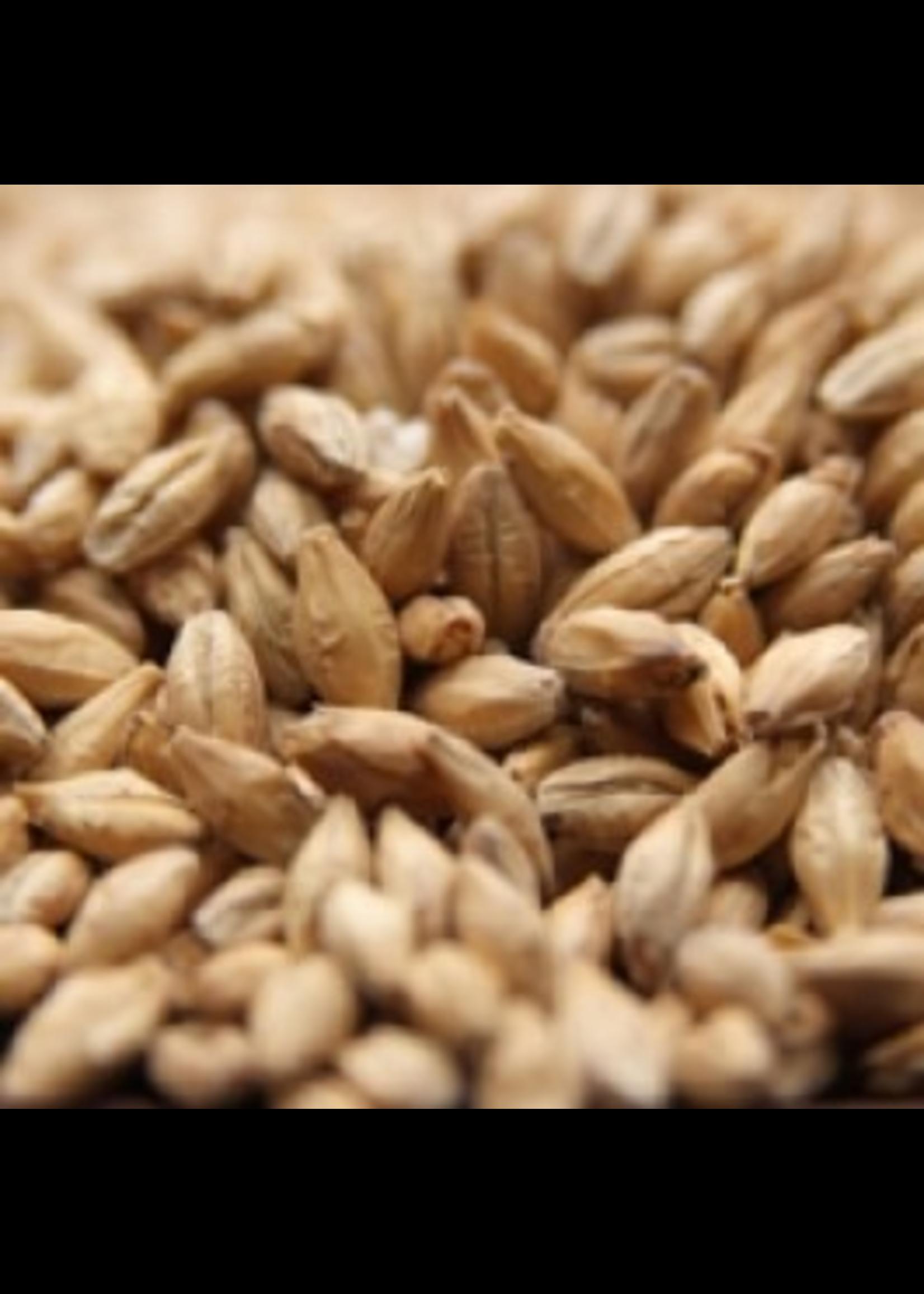 Grain Weyermann® Pilsner Malt - 10 LB
