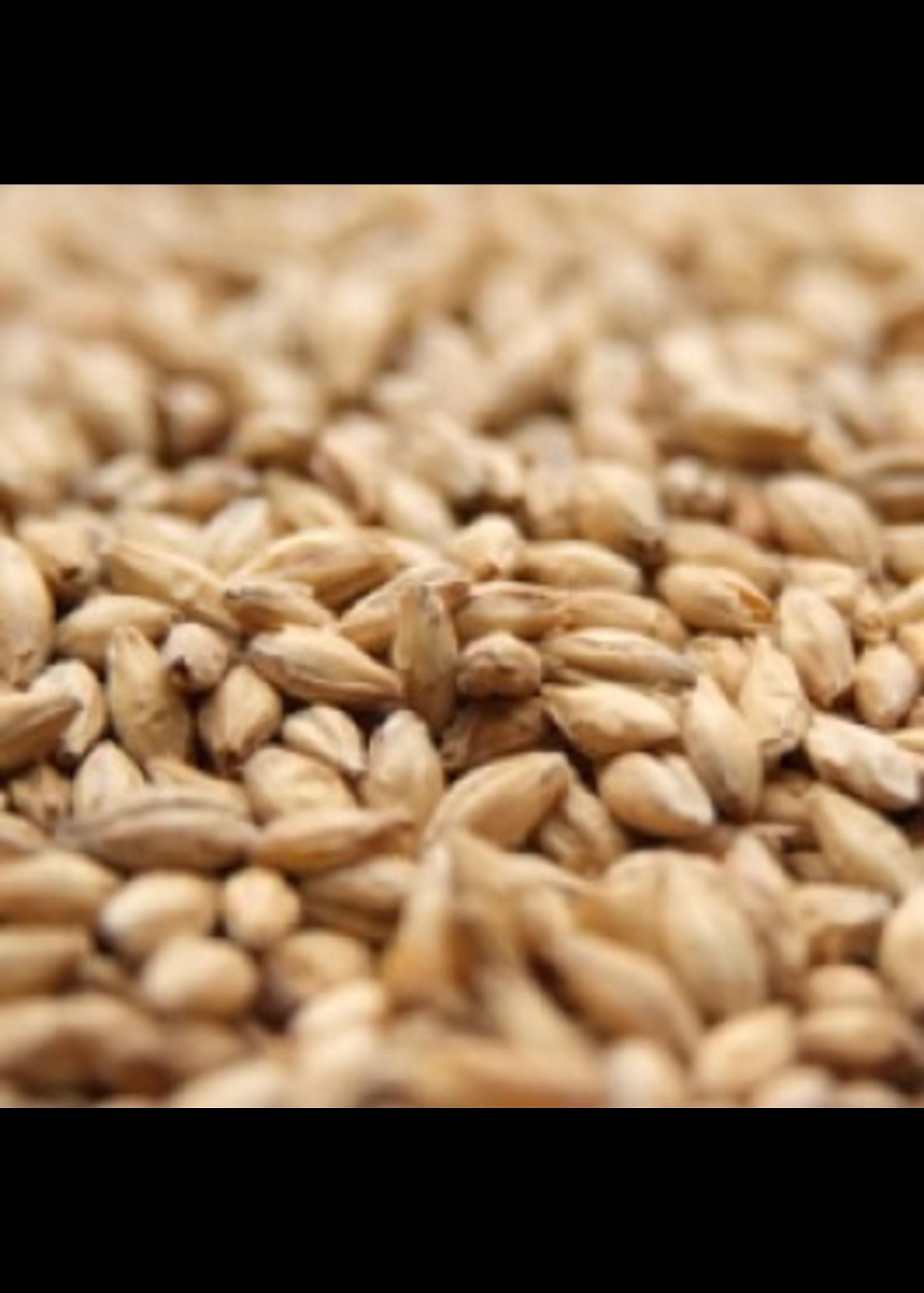 Grain Weyermann® Bohemian Pilsner Malt - 10 LB