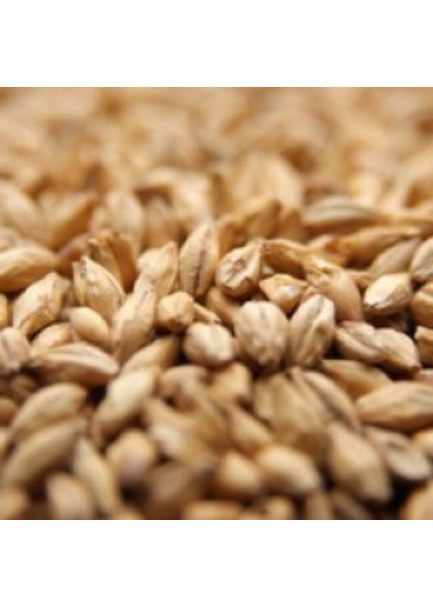 Grain Weyermann® CaraFoam Malt - B7 - 1 LB