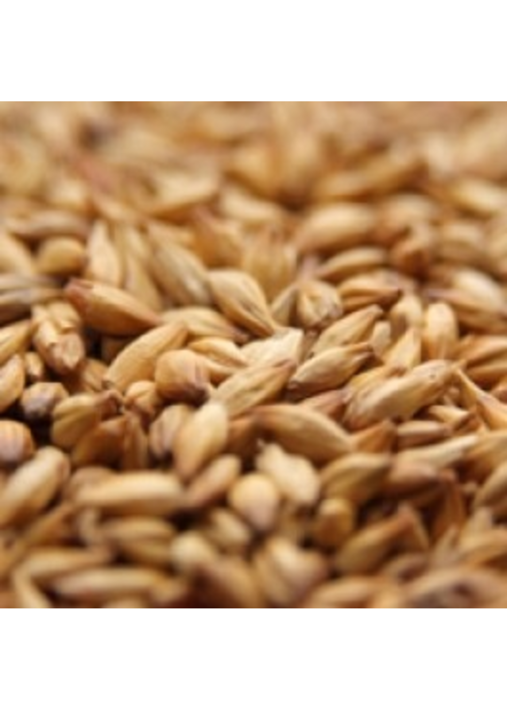 Grain Weyermann® Vienna Malt - 10 LB