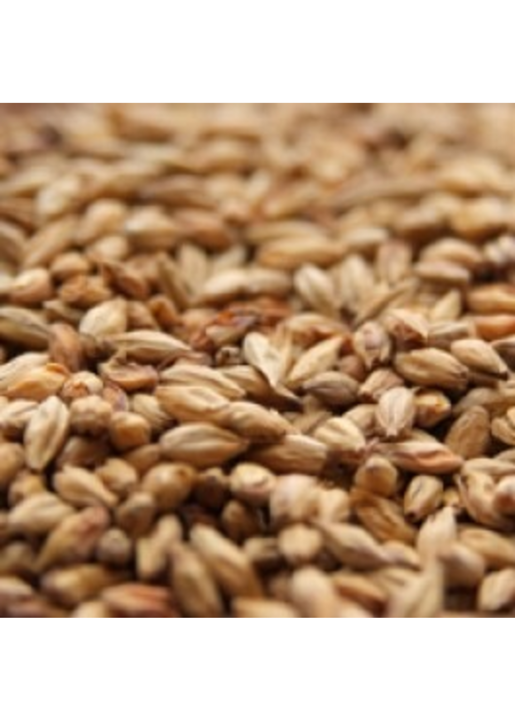 Grain Weyermann® Abbey Malt - B5 - 1 LB