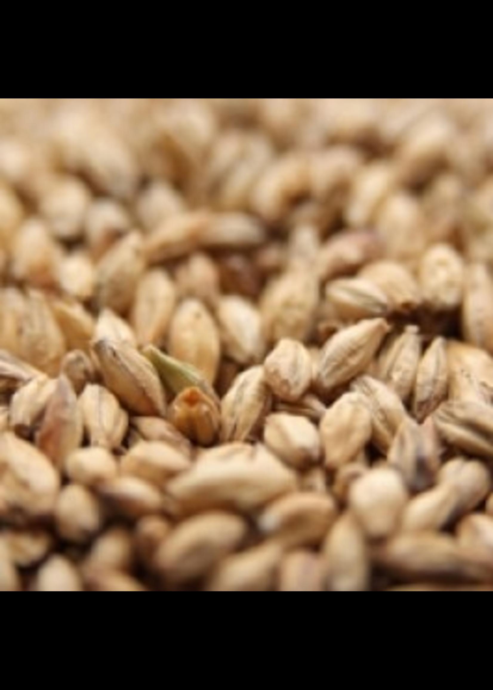 Grain Weyermann® Pale Ale Malt - A11 - 1 LB