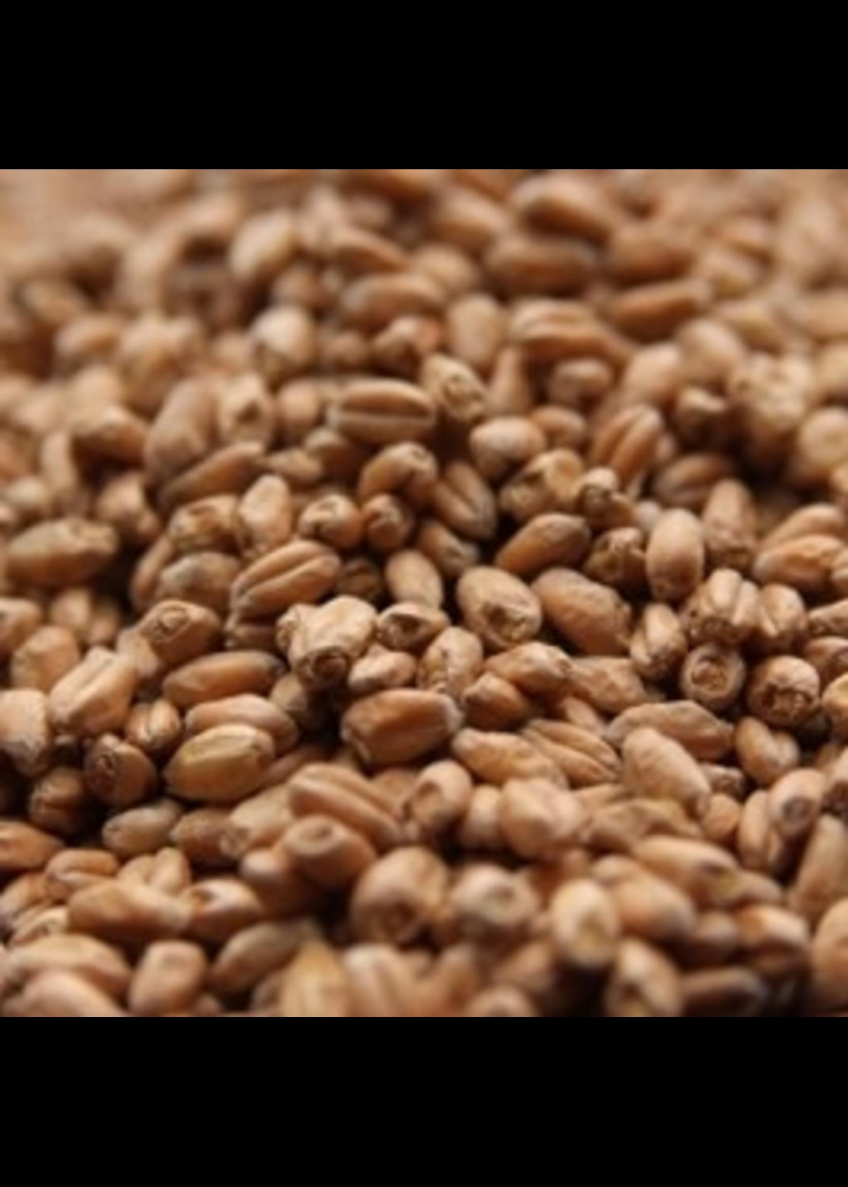 Grain Weyermann® Floor-Malted Bohemian Wheat Malt - C8 - 1 LB