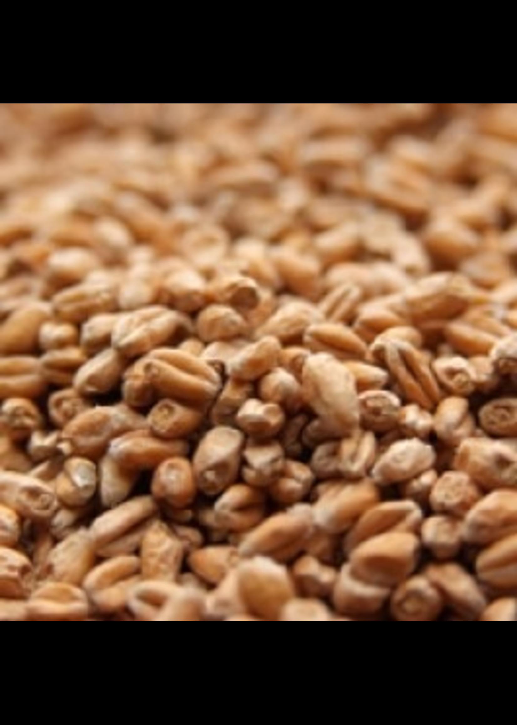 Grain Weyermann® Pale Wheat Malt - 10 LB