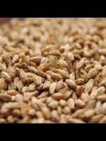 Grain Rahr 6-Row Brewers Malt - A41 - 1 LB