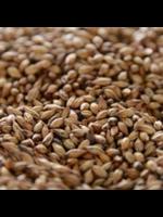 Grain Patagonia Caramel 90L Malt - A28 - 1 LB