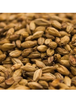 Grain Weyermann® Barke® Vienna - 10 LB
