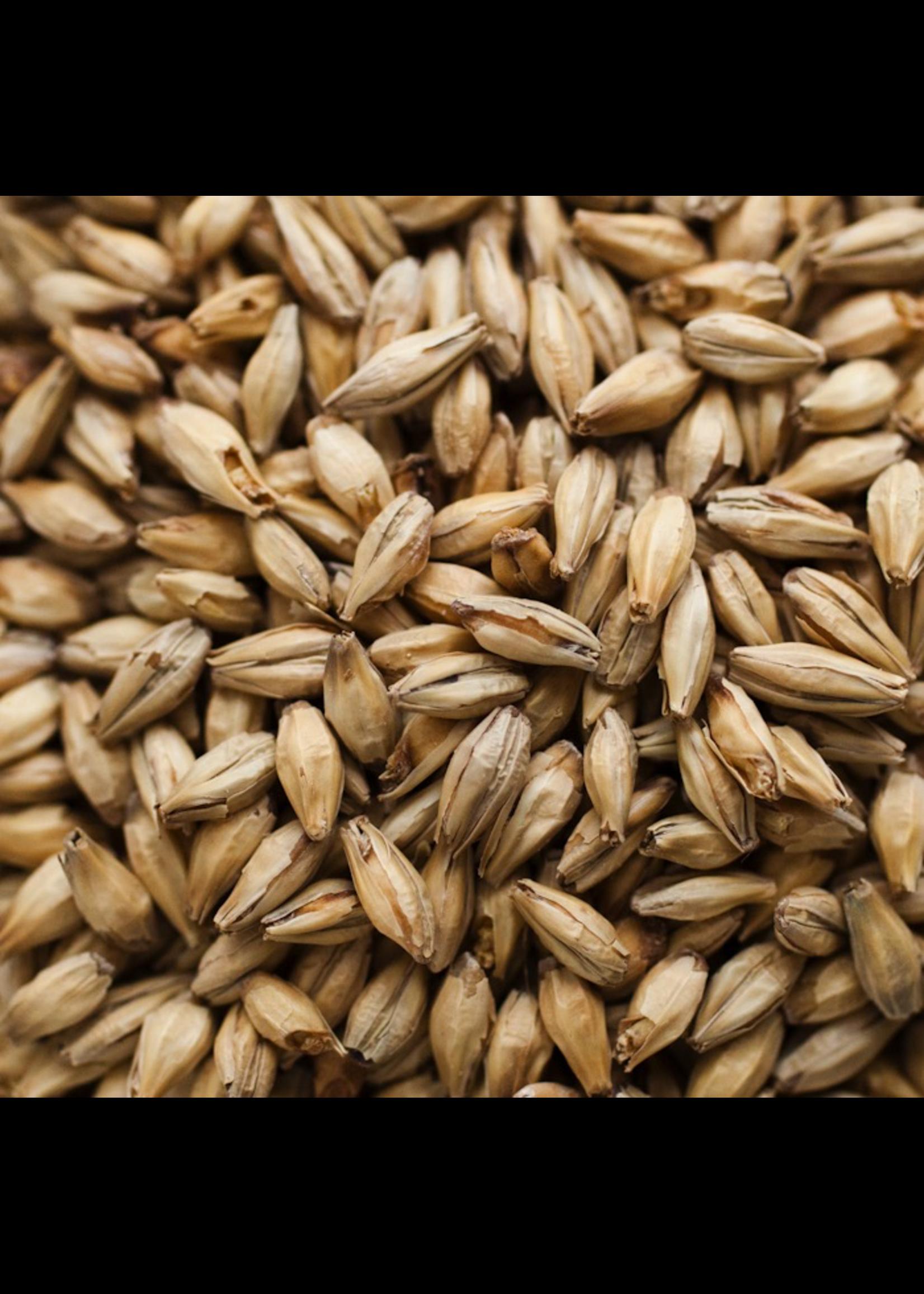 Grain Bairds Heavy Peated Malt - E16 - 1 LB