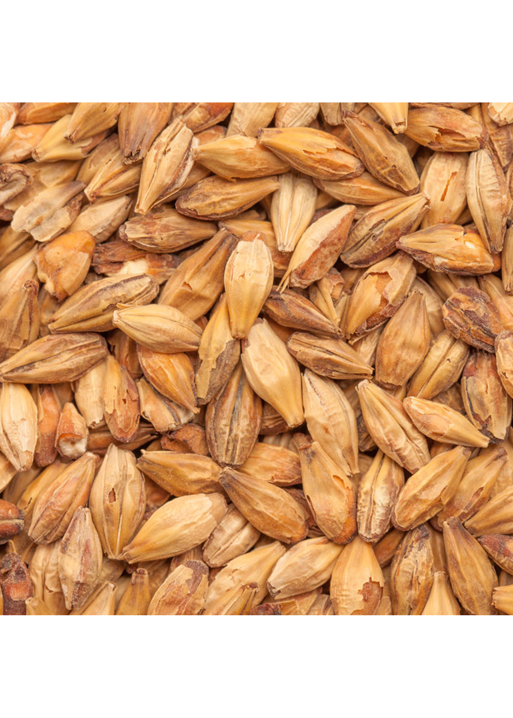 Grain Weyermann® CaraHell Malt - 55 LB