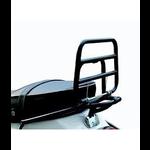 Parts Rack, Rear LX/S Black OEM Fold Down