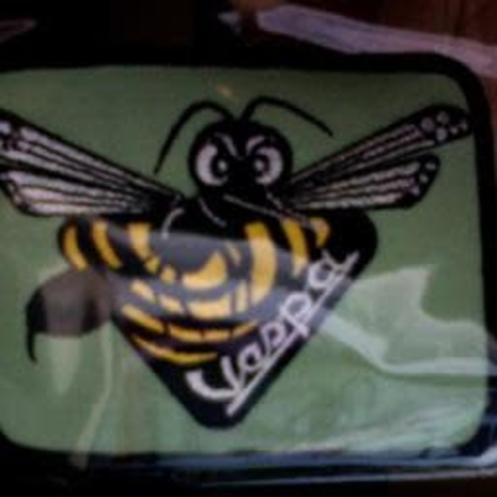 Lifestyle Patch, Angry Wasp
