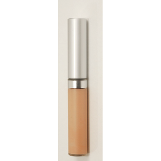 Eyes Sand Wise Disguise Concealer