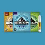 Himalaya / Tangie