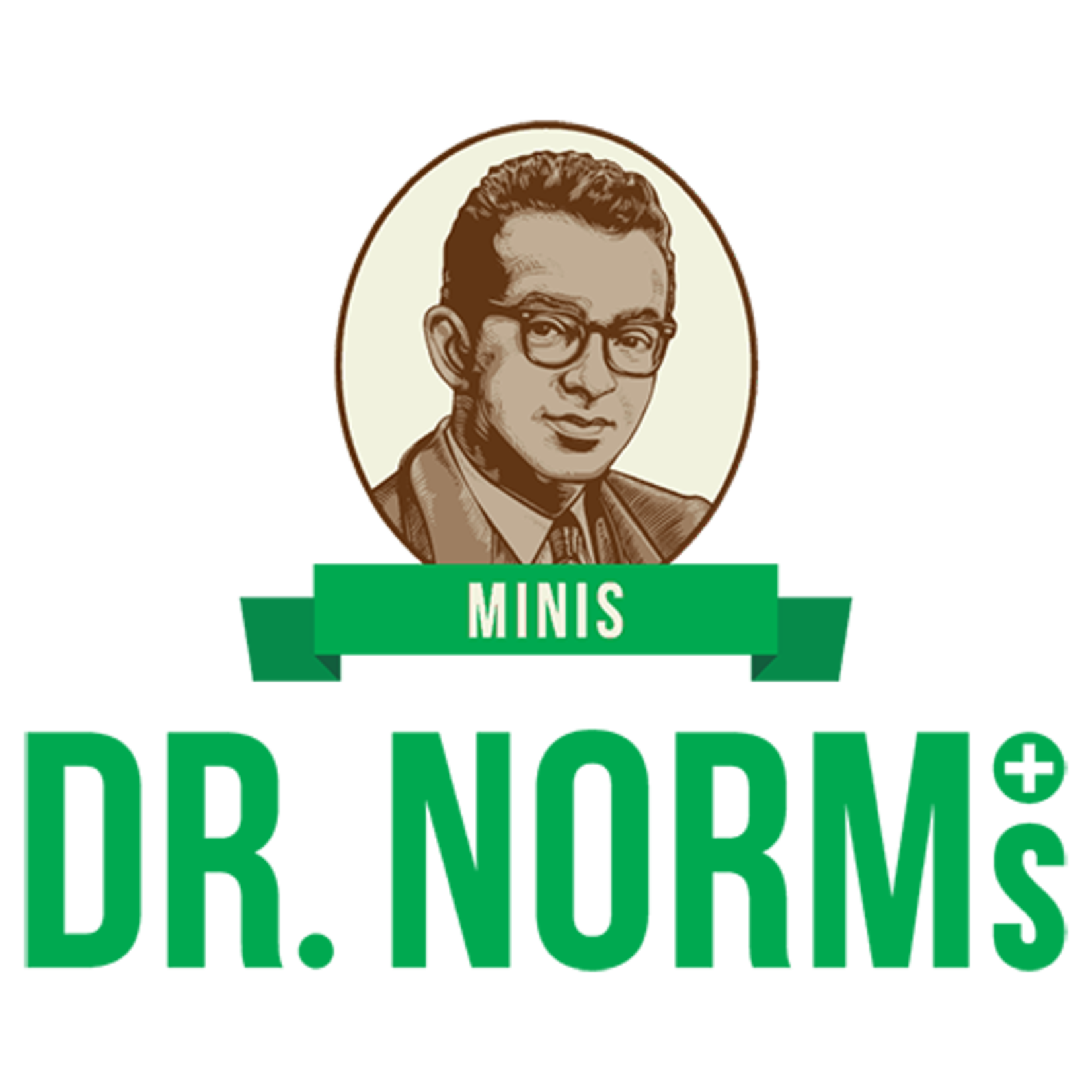 Dr. Norms / Fruity Crispy Rice Bar
