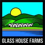Glass House / Flo White