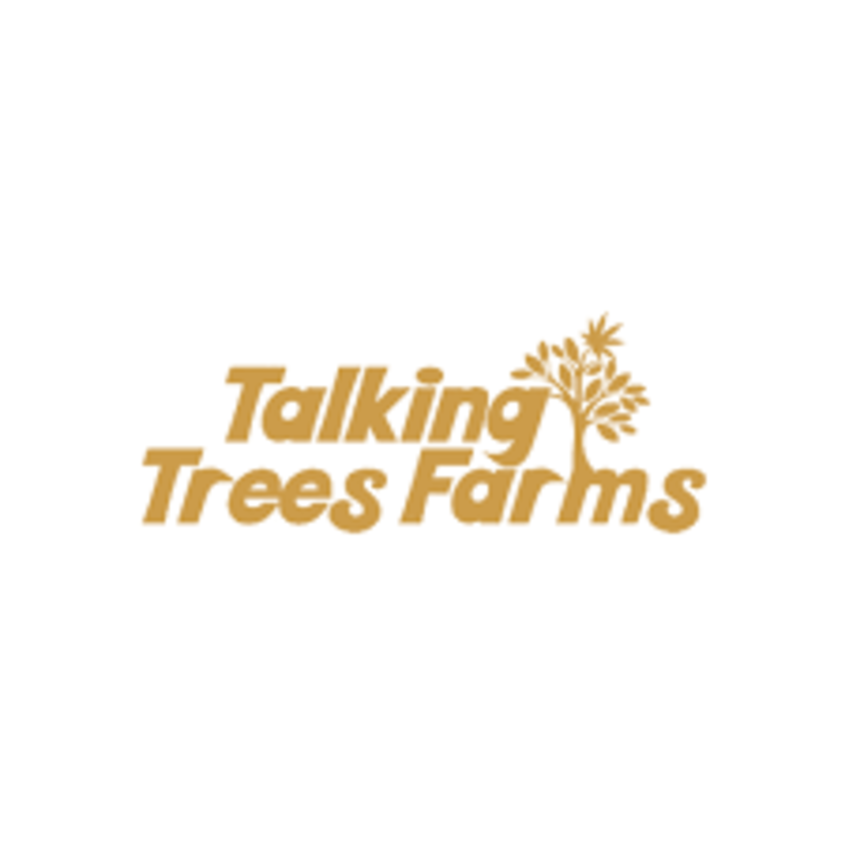 Talking Trees / Cali Lime Pie (Bubble)
