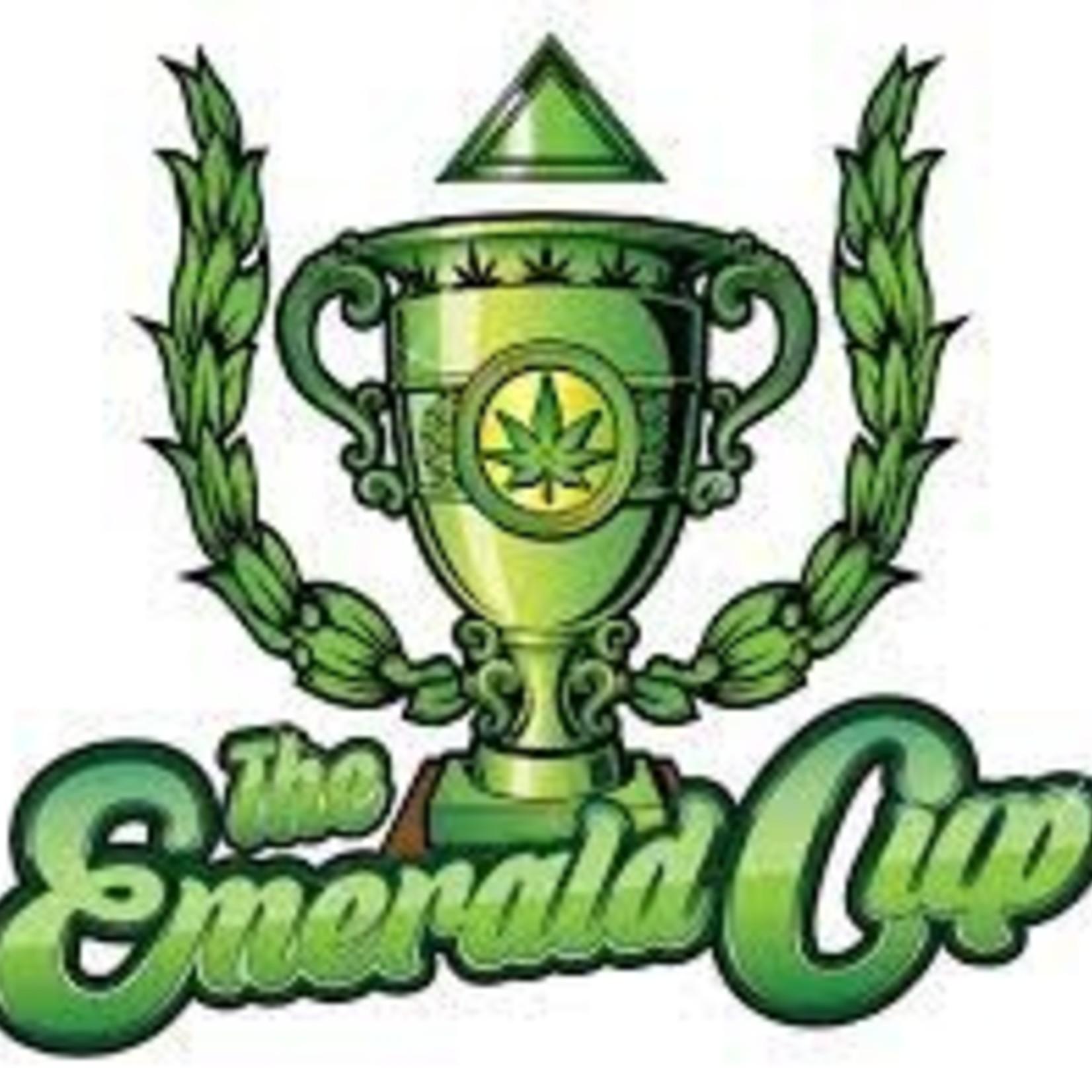 Emerald Cup / Bianchetto (Live Rosin)