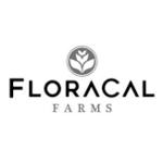 Floracal / Kush Mints 1G