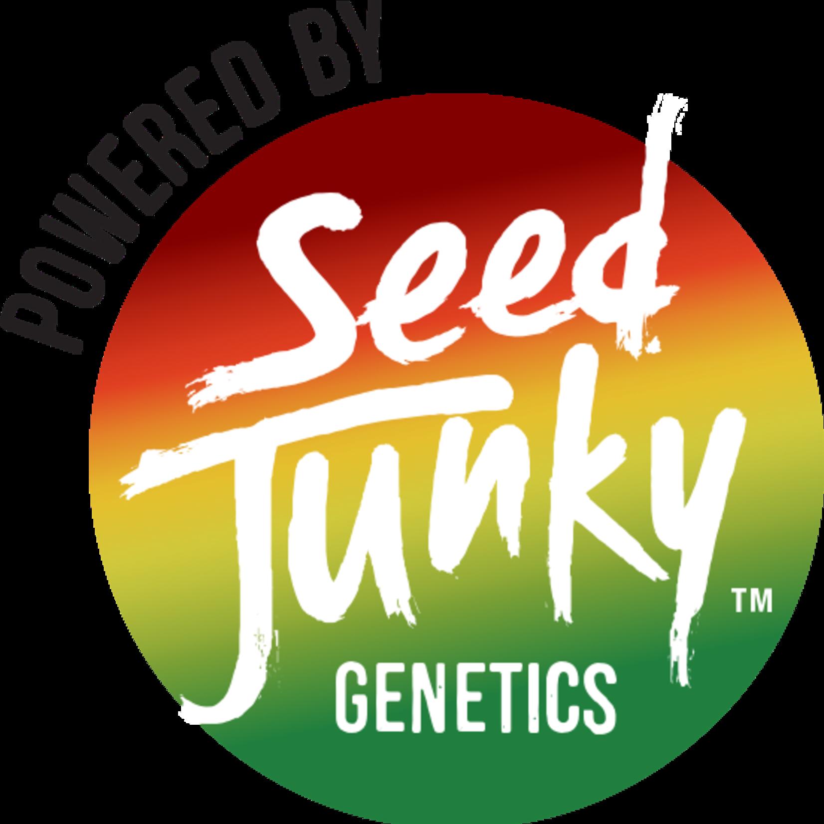 Seed Junky / Ice Cream Cake #27