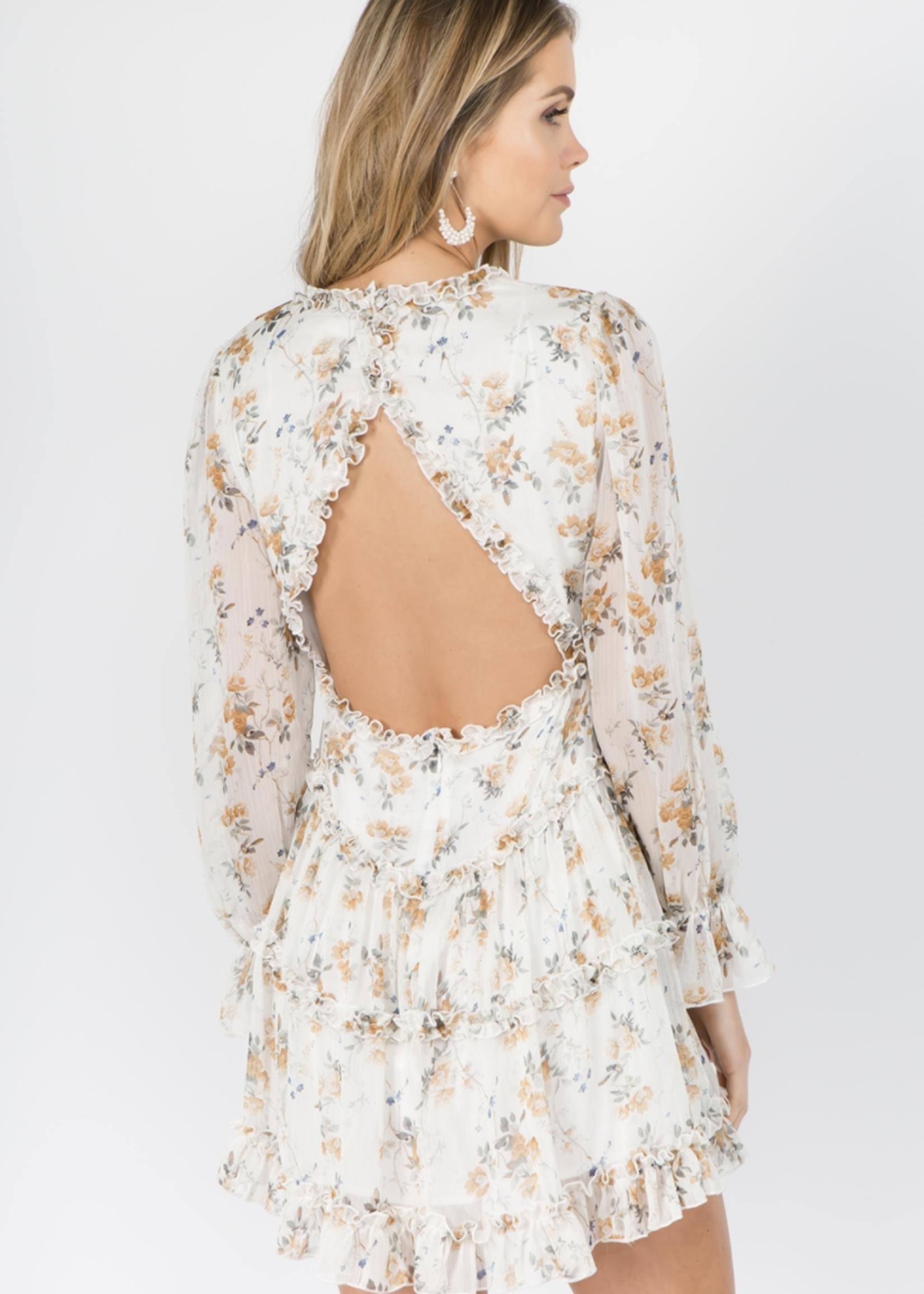 Fanco Floral Open Back Dress