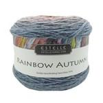 Estelle Yarns Rainbow Autumn