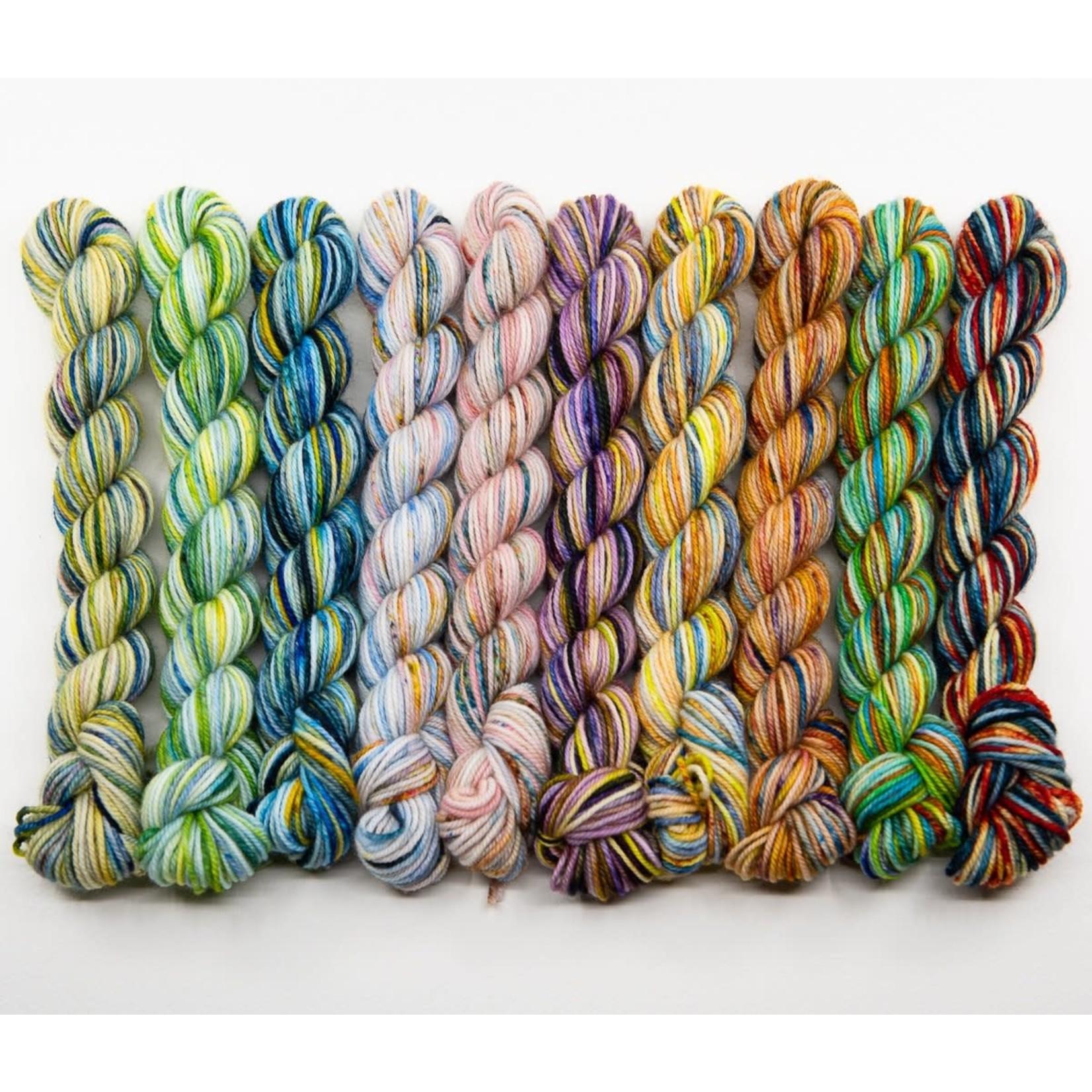 Ancient Arts Yarns Bundle of 10 - New colourways