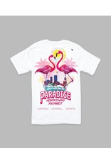 PAPER PLANES BY ROC NATION WHITE PASTEL PARADISE TEE
