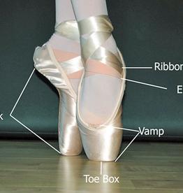 Bloch Bloch Point Shoe Elastic