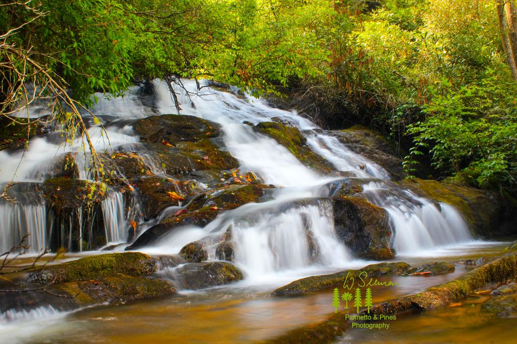 Art Waterfall Print