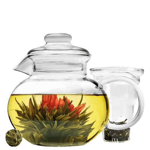 Tea products Primula Blossum Teapot 40oz