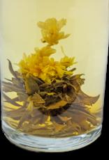 Teas Green Flowering Tea Allegria Jasmine Burst