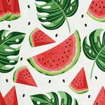 FT Pembroke Watermelon Napkin (20pk)