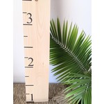Solid Signs Favourite Things- Growth Chart Natural