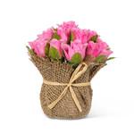 Abbott Pink Rose Heads in Jute