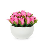 Abbott Pink rose heads in a bowl