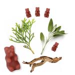 Happy Wax Sage & Cedarwood Wax Melts