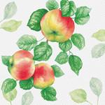 Abbott Garden Apple Napkins - 20pack