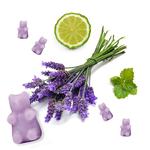 Happy Wax Calming Lavender Wax Melts