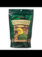 Lafeber's Lafeber  Tropical Fruit Nutri-Berries For Conures 10 OZ