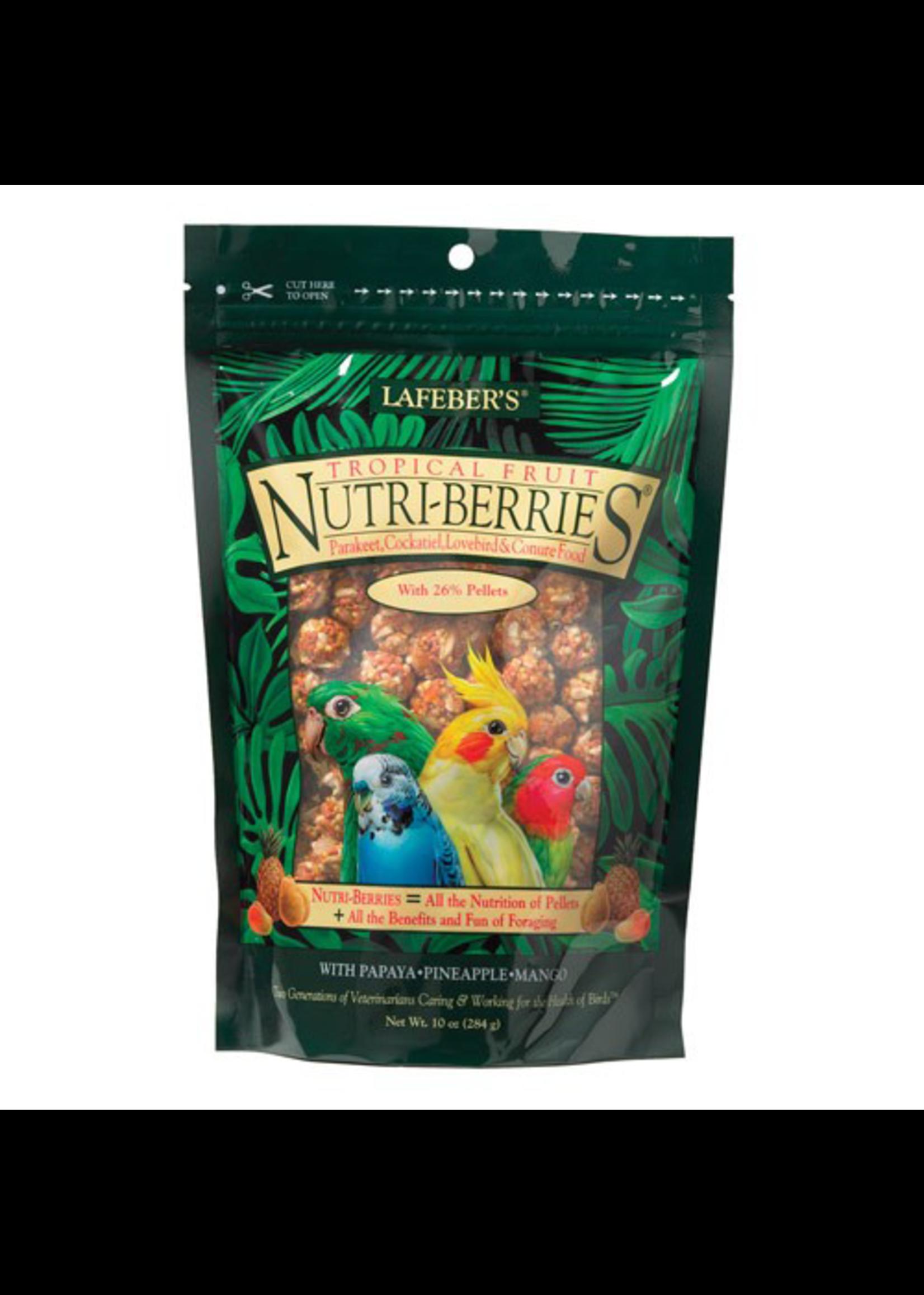 Lafeber's Lafeber Nutri-Berries Tropical Fruit Parakeet, Cockatiel & Conure (10oz)