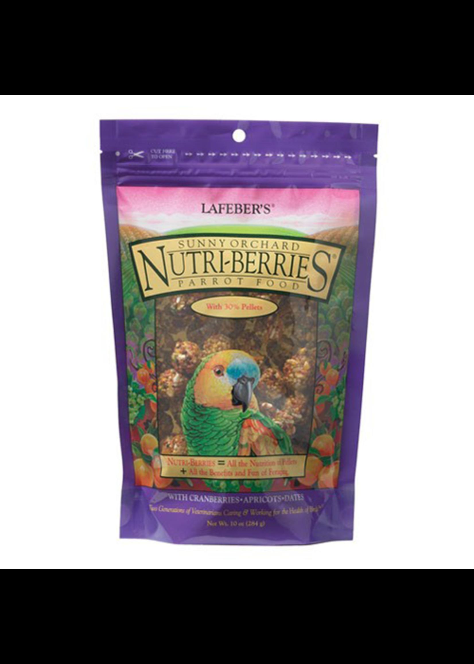 Lafeber's Lafeber Nutri-Berries Sunny Orchard Parrot (10oz)