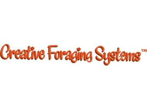 Creative Foraging Systems