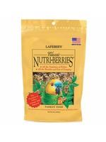 Lafeber's Lafeber Nutri-Berries Classic Parrot (10oz)