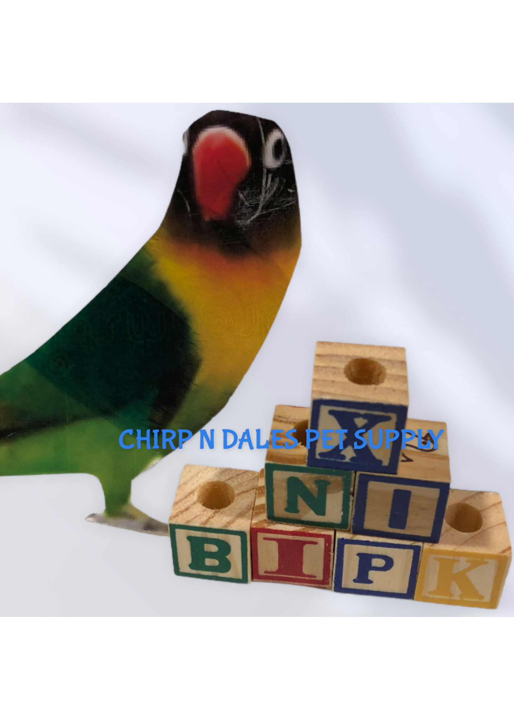 CND Wood ABC Blocks 15MM  Drilled