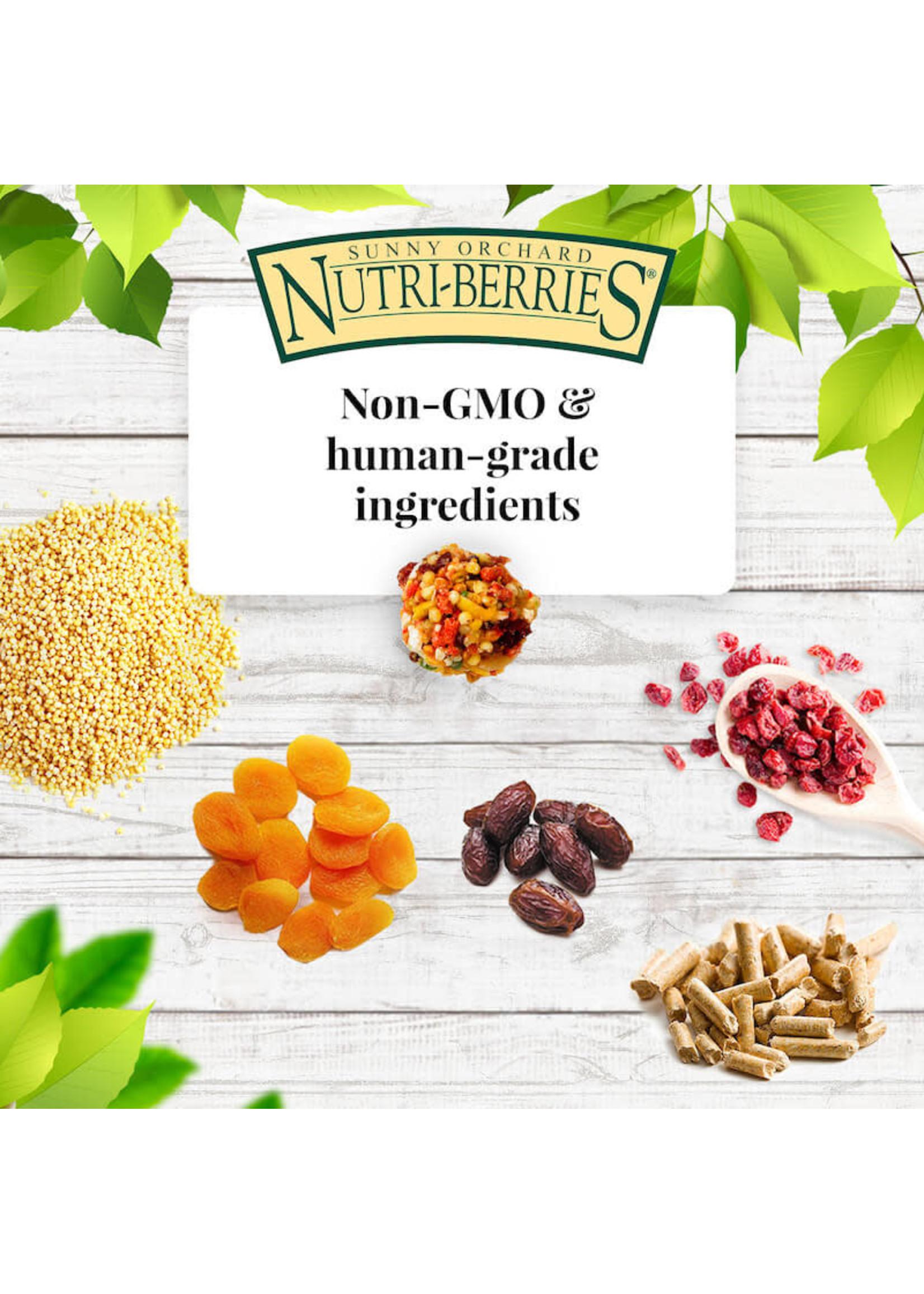 Lafeber's Lafeber Nutri-Berries Sunny Orchard Parakeet, Cockatiel, Lovebird & Conure (10oz)
