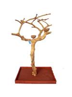 """A&E A&E  Small Java Wood Tree Boxed (AE250S - 38""""x24""""x61"""")"""