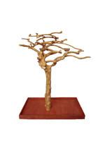 "A&E A&E  Small Java Wood Tree (AE200S - 48""x24""x66"")"