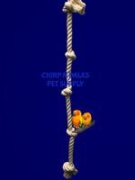 "Zoo-Max Cotton Tarzan Rope (3/4"" x 3')"