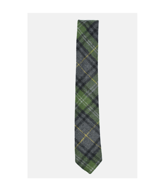 Curated Basics Green Plaid Tie
